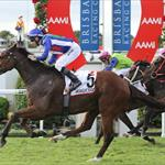 Magicool wins Qld Derby