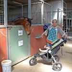 Stable Open Day 14/10/2014
