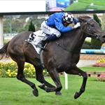 Tears of Joy wins at Moonee Valley March 14