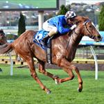 Wild Rain wins Moonee Valley 22/06/2015